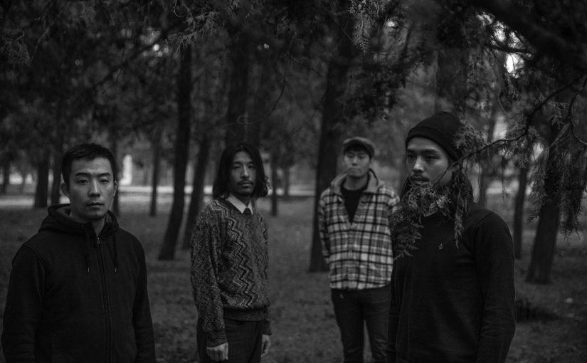 琥珀乐队介绍和宣传照更新